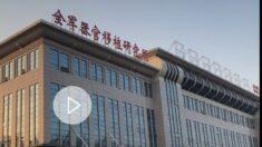 중국 불법 장기 이식 수술 여전해