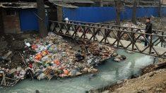쓰레기 넘치는 세계 뒷마당 '중국'