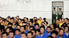 중국 교도관, 교도소 내 장기 적출 폭로