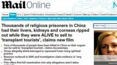 영국 유력 일간지, 생체장기적출 사건 집중보도
