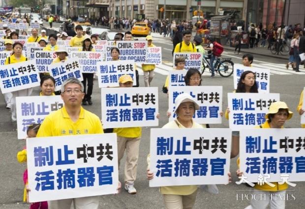 2016년 5월 13일 파룬궁 수련자들이 뉴욕 맨해튼에서 퍼레이드를 벌였다. 사진은 중국공산당의 생체장기적출 종식을 촉구하는 파룬궁 수련자. | 지위안/에포크타임스