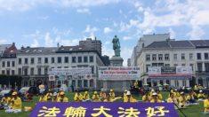 유럽의회 의원, 中공산당의 생체 장기적출 조사 촉구
