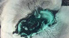 [영상] 물에 용해되는 알약, 핵폭발과 흡사