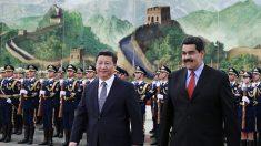 中, 베네수엘라에 대출 중단