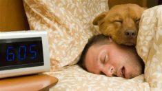 잠잘 때 나타나는 6가지 특이한 현상