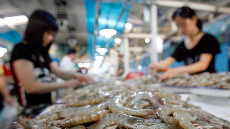 해산물 수출로 세계 1위인 중국은 항생제를 과도하게 사용해 지구의 환경을 파괴하고 있다. | Getty Images