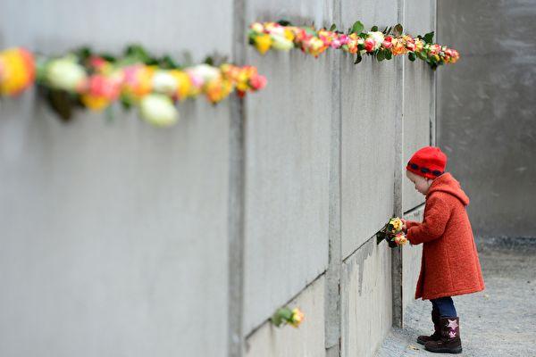 2014년 11월 9일은 베를린 장벽 붕괴 25주년을 맞는 날이다. 사진은 한 소녀가 장벽의 잔해에 장미꽃을 꽂는 모습이다. | JOHN MACDOUGALL/AFP/Getty Images