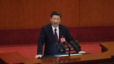 中고위층 내부투쟁 격화… 전환점 맞은 시진핑 정국