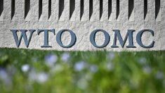 트럼프, 세계 무역질서 '새판짜기' 나섰다… 영향력 잃은 'WTO'