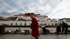 中, 티베트에 '재교육 캠프' 3개 건설 중…위성사진에 노출