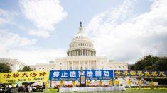 美 의원들, 20년째 계속되는 파룬궁 박해 종식 촉구