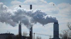"""""""기후 변화에 인간의 활동이 끼친 영향은 미미한 수준"""" 핀란드대 연구팀"""