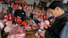 미국산 수입 중단했는데 돼지열병까지…중국 돼지고기 가격 폭등