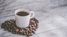 인도 최대 커피체인 창립자, 실종 36시간 만에 숨진 채 발견