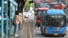"""""""괜히 폰 보는 사람 손"""" 한국인이 정류장에서 버스기사님 배려하는 방법"""