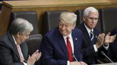 """트럼프 """"노벨상, 여러 가지 이유로 내가 받아야 할 것"""""""