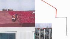 안전장비 없이 '고층 아파트' 비스듬한 옥상에서 '태양초' 제조 중인 아주머니