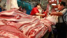 중국, 돼지고기 가격 폭등 비상 '백약이 무효'…정권 수립 70주년 앞두고 전전긍긍