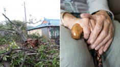 태풍 '링링' 첫 사망자 발생…강풍에 날아가 숨진 70대 할머니