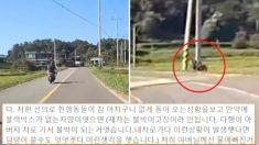 오토바이 사고로 곤경에 빠진 운전자 구했다가 '가해자'로 몰린 목격자