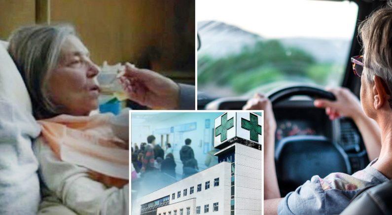 [좌]영화'아무르, [우]Shutterstock, [중]연합뉴스