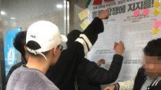 중국유학생들 '엇나간' 애국심, 한양대 '홍콩' 대자보 훼손…욕설로 위협까지