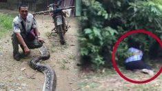 6m 뱀에 휘감긴 아내의 비명 듣고 뱀과 싸운 남편