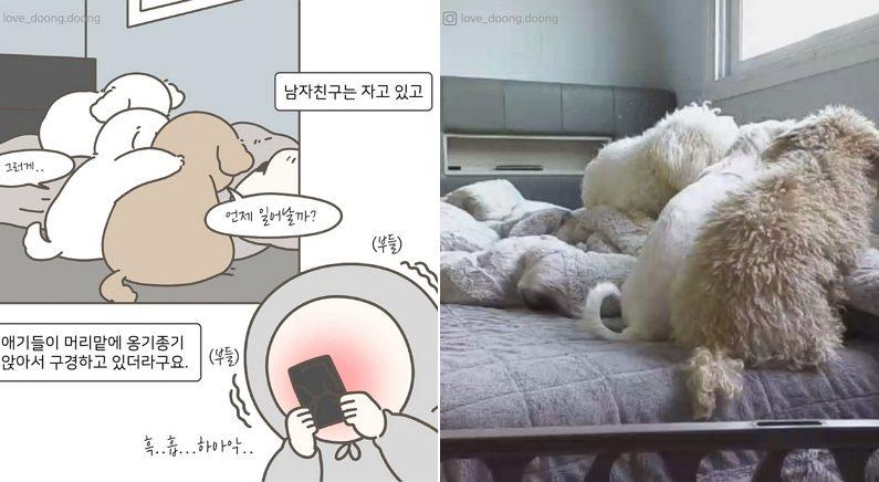 Instagram 'love_doong.doong'