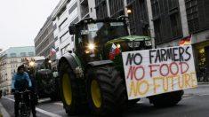 """독일 농민, """"환경규제 지나치다"""" 베를린 중심가서 대규모 시위"""
