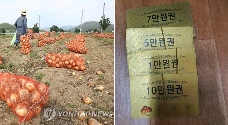 [좌] 기사와 관련 없는 자료 사진   연합뉴스 [우] 대구경북 연대회의 제공