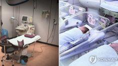 """""""출산 후 과다출혈로 사망한 누나가 편히 눈감게 도와주세요"""""""
