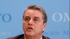"WTO ""상소기구 마비가 사망은 아냐""…속수무책 '정치해결' 타령"