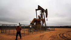 미국, 하루 9만 배럴씩 해외로…70년만에 원유 순수출국 변신