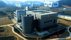 '우한 폐렴' 확산 속 대만·홍콩 네티즌, 우한시 고위험성 바이러스 연구소에 주목