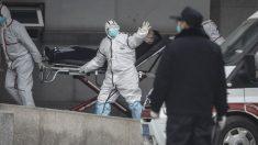 중국 '우한 폐렴' 빠르게 확산…4번째 사망자·수십 명 추가 감염