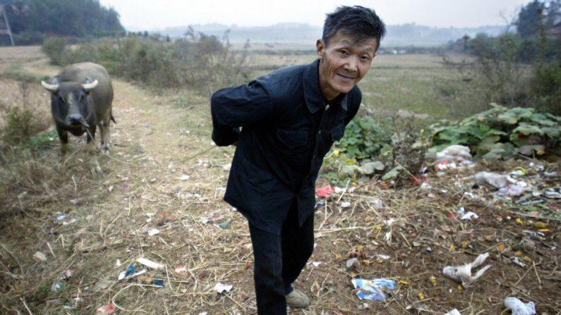 중국 후난성 웨양의 한 마을에서 농부가 물소를 끌고 쓰레기 널린 마을 주변을 걷고 있다. 중국 농민 절반은 스스로 생계를 해결하지 못하는 상황에 놓여 있다. | FREDERIC J. BROWN/AFP via Getty Images