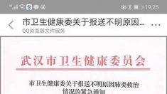 """中 우한서 '원인 불명의 폐렴' 집단 발병…단톡방 """"사스 바이러스 검출"""" 소문 확산"""