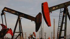 """국제에너지기구 """"코로나19 확산으로 석유 수요 전망치 10년 만에 최하"""""""