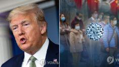 """트럼프 '중국 바이러스' 표현에 """"매우 정확""""…중국 책임론"""