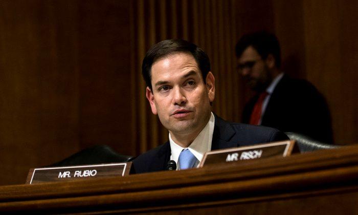 워싱턴 의사당에서 열린 상원 외교위원회 청문회에 참석한 마르코 루비오 공화당 상원의원. 2017. 1. 21. | Drew Anger/Getty Images