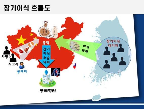 중국 장기밀매 흐름도 | 부산지방 경찰청