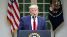 """트럼프 """"WHO, 중국의 허위정보 유포 도왔다…자금지원 중단"""""""
