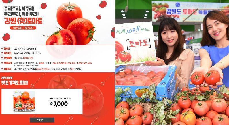 [좌]강원도농수특산물진품센터 인터넷 홈페이지 [우]연합뉴스