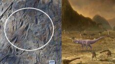 1억 년 전 우리나라엔 두 발로 걷는 대형 원시악어 살았다