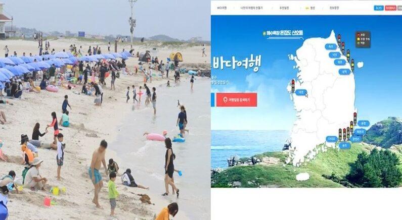 연합뉴스/바다여행 홈페이지