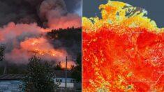 """""""산불까지 덮쳤다"""" '영상 38도' 치솟으며 펄펄 끓고 있는 러시아 시베리아 근황"""