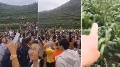 """중국 남부지방서 '괴이한 소리'에 주민들 화들짝…당국 """"지진 전조 아냐"""""""