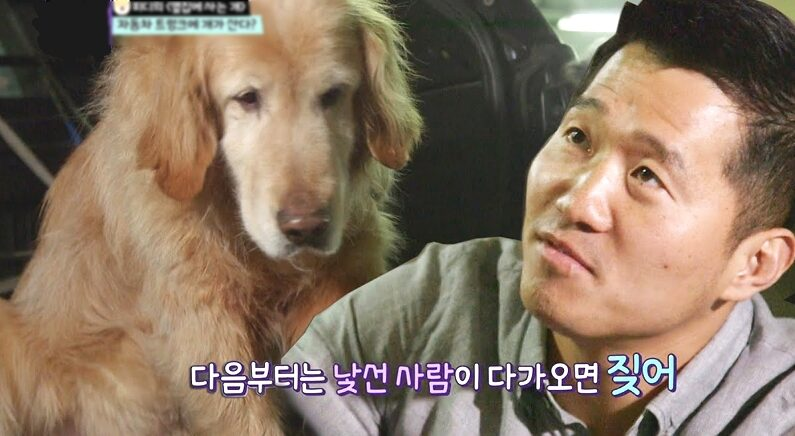 유튜브 'KBS동물티비 : 애니멀포유 animal4u'