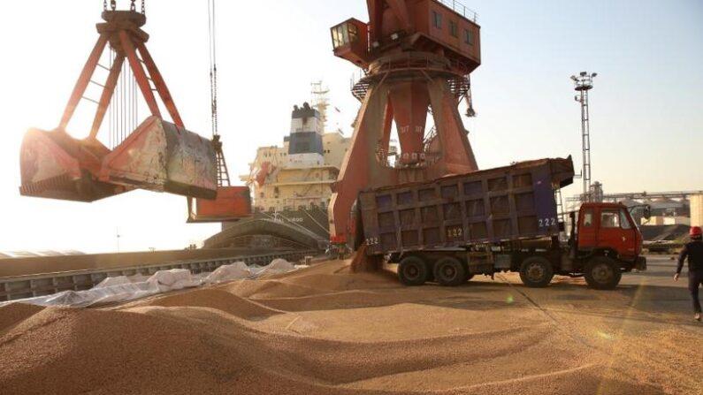 중국 난퉁항에 수입되는 대두 | AFP=연합뉴스