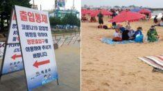 """""""전 세계 모범""""이라며 한국 해수욕장 방역 수칙 노하우 3가지를 소개한 영국 BBC"""